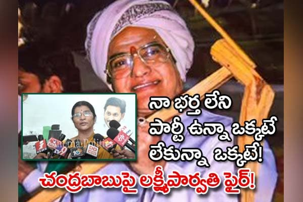 lakshmi Parvathi Comments